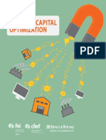 Working Capital Optimization