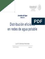Red Distribucion Eficiente