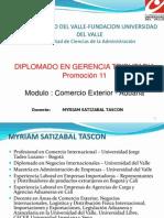 Diplomado de Tributaria Aduanas - Ms1