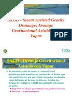 145284211 Cmg Sagd Spanish