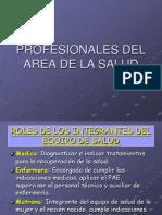 Pasada Profesionales de La Salud 2012