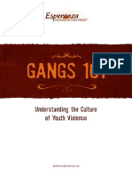 Gangs 101 - Understanding the Culture of Youth Violence