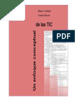 Un Enfoque Conceptual de Las TIC (3)
