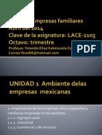 2.-empresas micro (1)