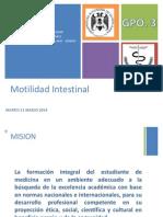 Motilidad Intestinal FP1