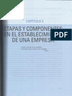 Cap 5 Etapas Y Componentes en El Establecimiento de Una Empresa