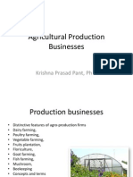 3. Production Businesses