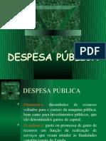Cap. 5 - Despesa Pública
