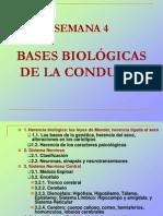 SEMANA 4