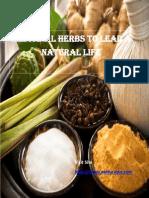 Ayurveda Medicinal  Herbs