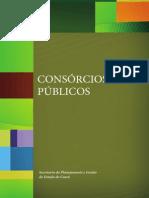 Consorcio Realiza - Como Constituir um Consórcio Público?