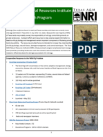 Wild Pig Resources- Texas A&M Natural Resources Institute