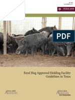 Feral Hog Approved Holding Facility Guidelines in Texas