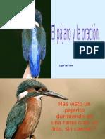 El-pajaro
