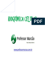 Bioqumica Celular - Composio Quimica Celular - 1 Ano Modo de Compatibilidade