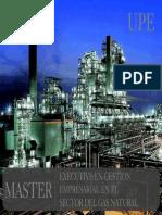 Master Gestion Gas Natural