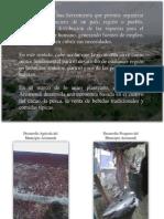 La Economía Del Municipio Arismendi