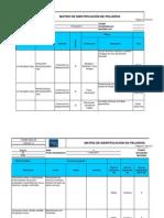 Formato Identificación de Peligros 2010