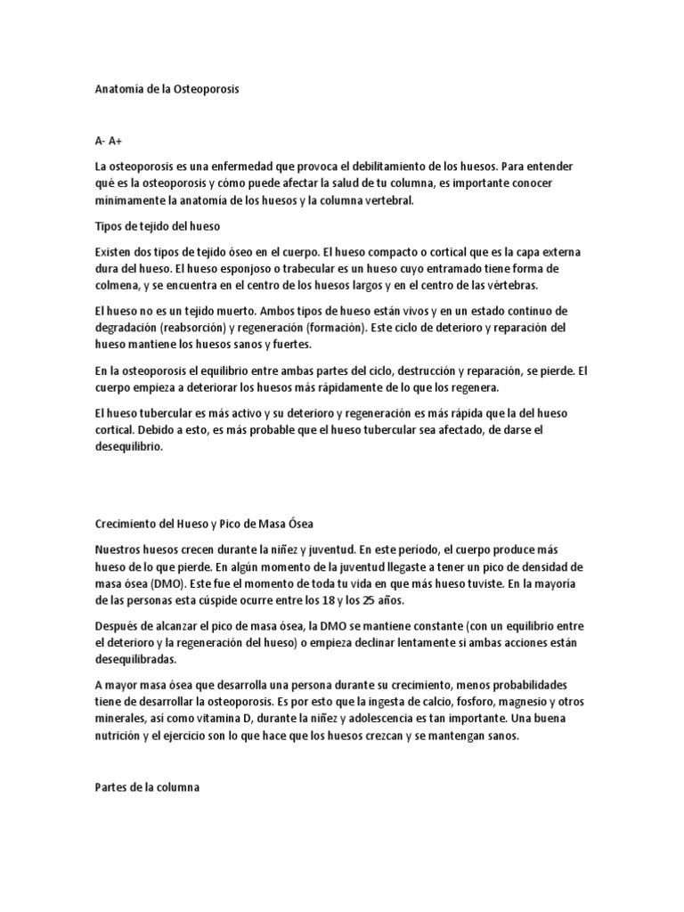 Magnífico Lo Que Es Anatomi Motivo - Anatomía de Las Imágenesdel ...