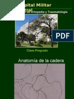 Fx Cadera, Femur y Cotilo