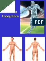 Anatomia y Vascular- Curso Especial