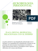 microbiologiaperiodontal-100913222322-phpapp01