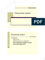 Filogenetine analize