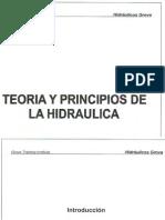 curso aplicado de hidraulica en gruas.pdf