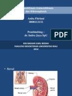 ureterolithiasis(Presentation).ppt