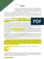 Resumen Derecho Constitucional 2007 - Bidart Campos