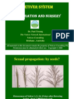 Vetiver Grass Propagation and Nursery Management