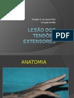 Cópia de Lesão Dos Tendões Extensores Modificado 3