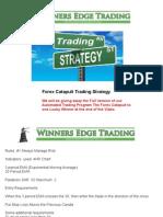 Forex  Strategy Training