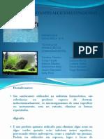Saneantes Algicidas e Fungicidas