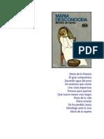 María Desconocida BROTES de OLIVO