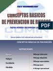 CAPACITACION OBSERVADORES HSEC.ppt