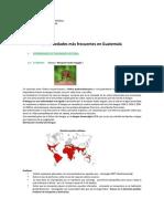 Enfermedades Comunes Guatemala
