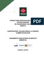 Lineamientos Variante Carmen de Bolivar 24 Octb
