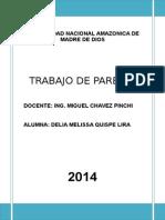 DELIA TRABAJO PARETO.doc