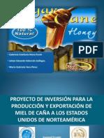 Proyecto de Inversión Para La Producción y Exportación