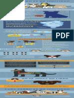 AFF Infographic SPANISH Whole
