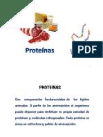Clase 5 Proteínas 2014
