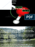Circuitul Apei in Natura . Cilian