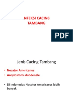 INFEKSI CACING