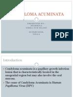 Condyloma Acuminata Case Report