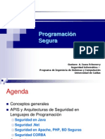 Program Ac i on Segura