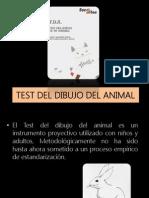 Test Del Dibujo Del Animal