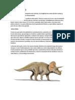 Triceratops (i)