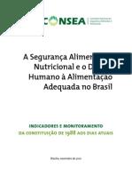 A Seguranca Alimentar e Nutricional e o Direito Humano a Alimentacao Adequada No Brasilaula4 Tela22