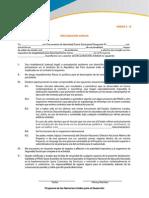 Anexo 3B Declaracion Jurada 1-Formato